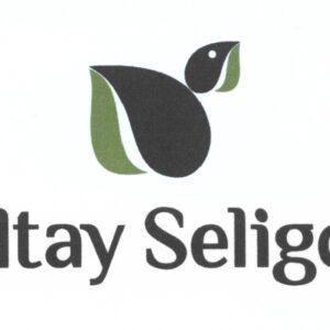 Алтай-Селигор